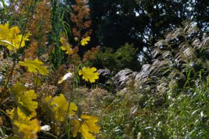 knoll-gardens-12-1024x684