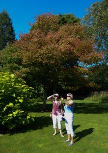 knoll-gardens-14-723x1024