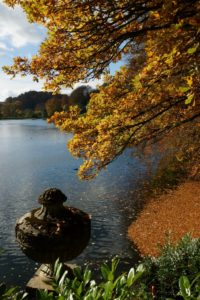 stourhead-autumn-8-683x1024