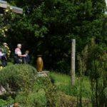 Hale gardens (29 of 46) (1280x853)