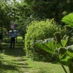 Hale gardens (39 of 46) (1280x853)