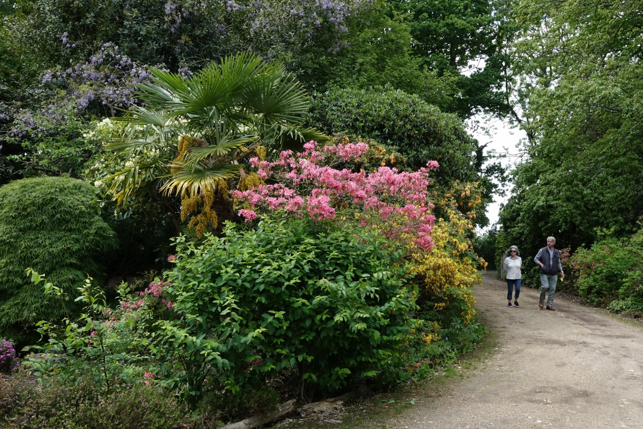 Hale gardens (5 of 46) (1280x853)
